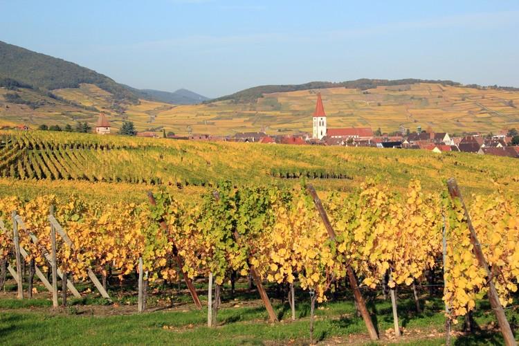 Soirée HARMONIE autour des Vins d'Ammerschwihr